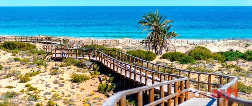 c8_los-arenales-del-sol-beach.-alicante-jpg-espanabest