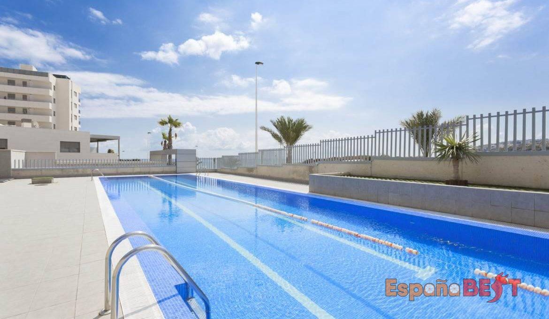 piscina-olimpica-1a-1170x738-jpg-espanabest
